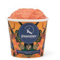 Vaso de helado 70 gr